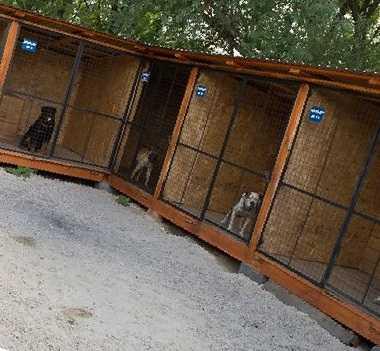 гостиница для животных